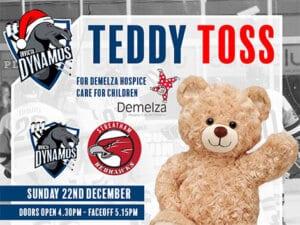 teddytoss_banner